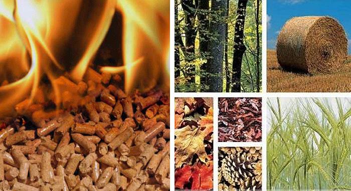 ventajas y desventajas de la biomasa como energia para las calderas y calefactores